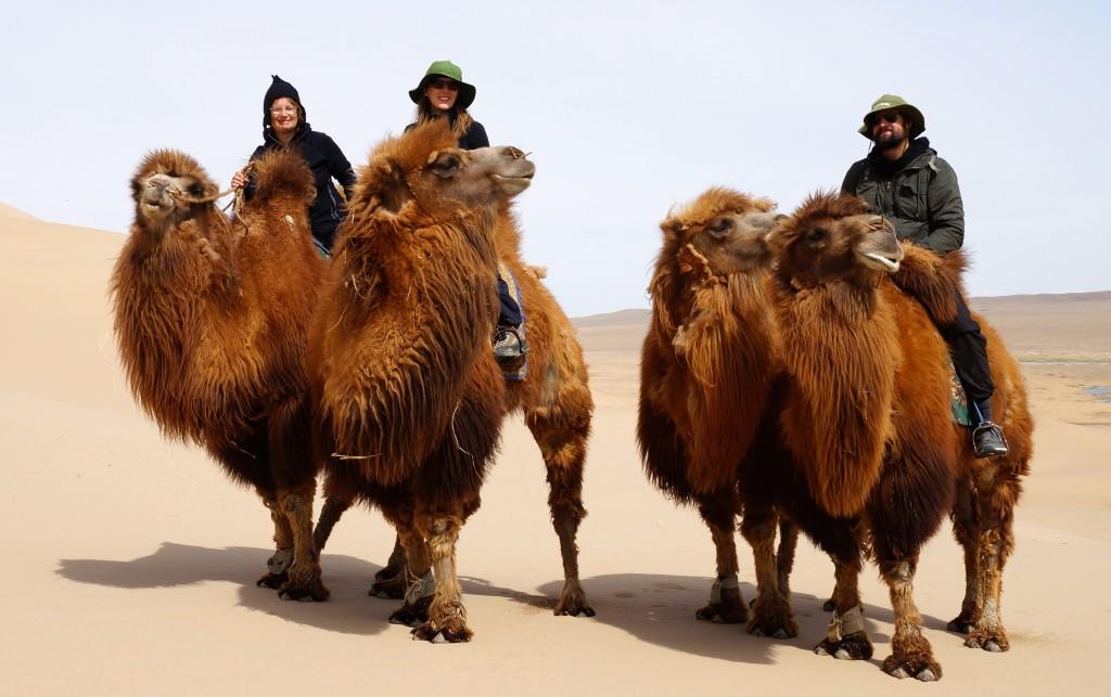Wüstenausritt auf dem Kamel