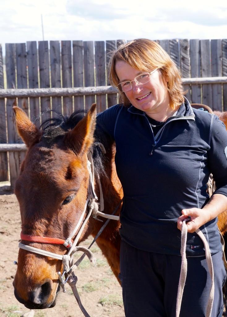 mongolisches Pferd